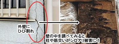 外壁にひび割れ・・は、シロアリ被害の兆候