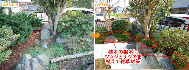 低木類の植栽で雑草対策