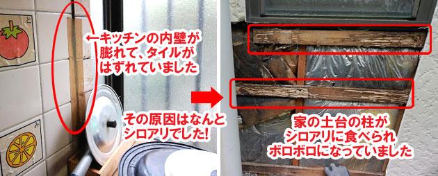 外壁にヒビ(亀裂)が入っている、外壁のサイディングがめくれている、壁を触ると手に粉が付く(チョーキング現象)・・はシロアリが原因かも~