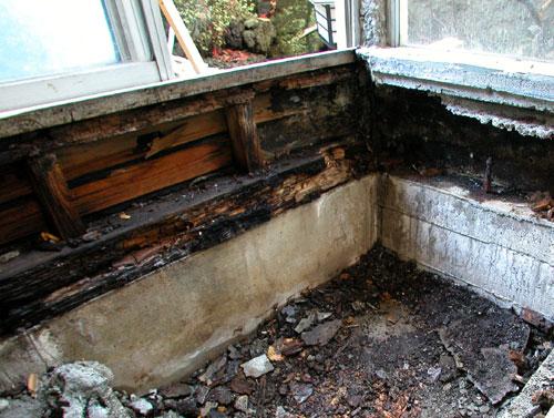 浴室がシロアリ被害に