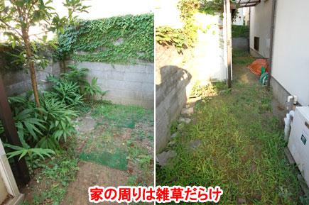神奈川県藤沢市の庭,ガーデン,外構,エクステリア,造園,雑草対策,除草,剪定,お庭のリフォームはグリーンパトロール