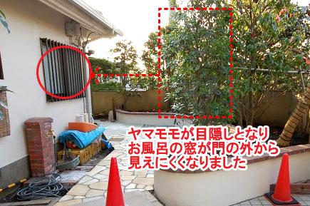 藤沢市 植栽目隠し施工例