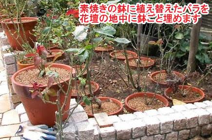 神奈川県茅ヶ崎市 N様邸 ドッグラン、雑草対策外構工事施工例