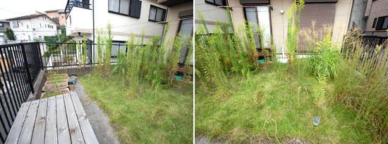 藤沢市 K様邸 雑草対策 造園工事 施工例 雑草 造園