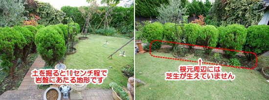 神奈川県鎌倉市K様 洋風庭園 造園施工事例