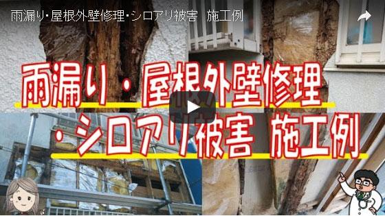 動画で見るシロアリ被害施工事例