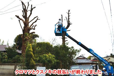 神奈川県藤沢市 大木の伐採・処分 危険ブロック塀改修 施工事例