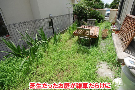 神奈川県川崎市 雑草対策・オシャレで可愛いレンガ張り施工事例